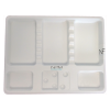 Disposable Tray 1